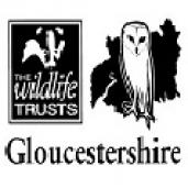glos_wildlife_trust-logo-png